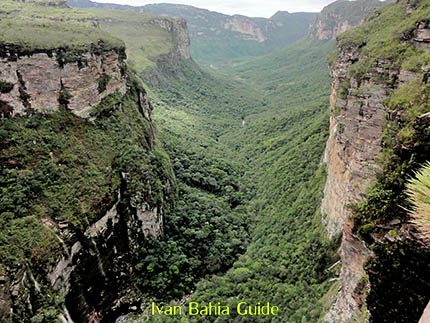 Trekking in the Valé do Pati with Ivan Salvador da Bahia & Chapada Diamantiana national park's official tour guide