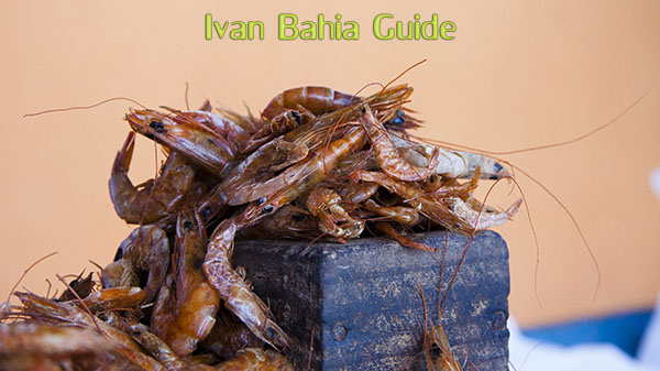 Typical dry shrimp on a market in Salvador da Bahia