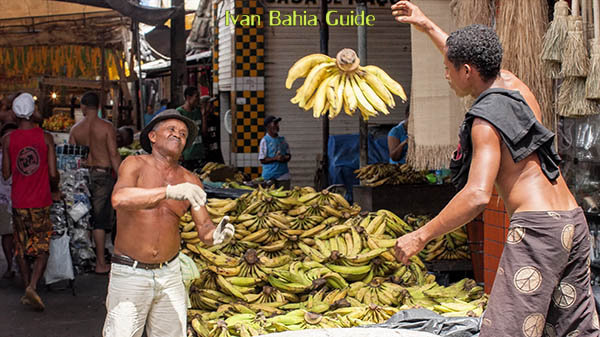 Banana stocking on Mercaco São Joachim in Salvador da Bahia