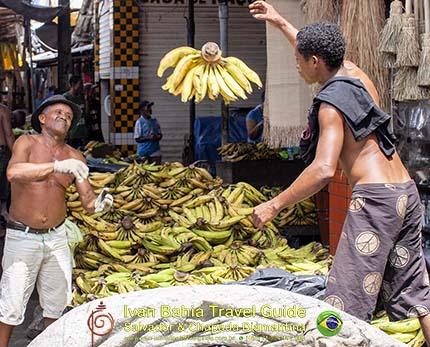 Vliegende bananen op de São Joachim markt, met vlaamse reis-gids Ivan (die al 10 jaar in Bahia woont), fotos uit Salvador da Bahia, wandelingen en rond-reizen met begeleiding in het Nederlands, in Brazilië. Onze hashtag : #IvanBahiaGuide #IvanSalvadorBahia #IvanBahiaReisGids #IvanSalvadorReisGids  #ReisGids #SalvadorBahia #Brazilie #Salvador500in1 #SalvadorBahiaFotos #BahiaFotos #FotosBahia #SalvadorBahiaBrazilie